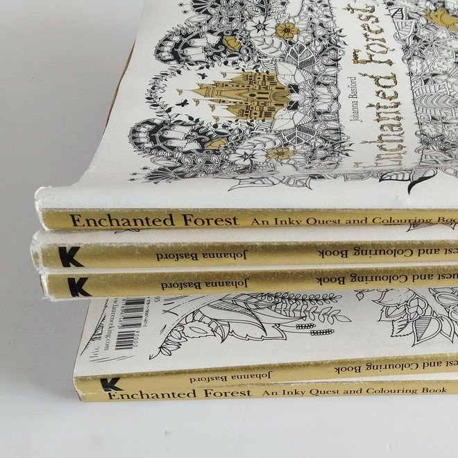 Enchanted Forest: An Inky Quest And Coloring Book By Johanna Basford 2015  Edition On 100outlets.com
