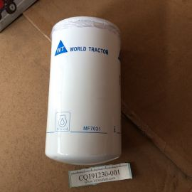 WORLD TRACTOR MF7031 OEM Oil Filter 2654407 for Perkins engines
