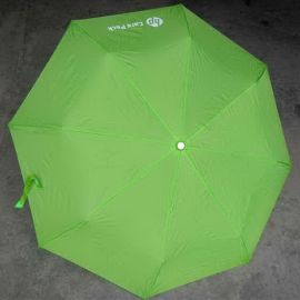 Green Umbrella for HP care pack Giftware