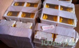 Lot 10 Newlec NL811 Switch & Socket Box $1.5/pc